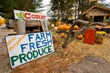 Farm stand in Holderness, New Hampshire