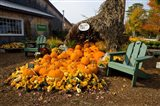 Gourds at the Moulton Farm farmstand in Meredith, New Hampshire