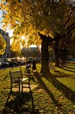 Late afternoon on the Dartmouth College Green,  New Hampshire