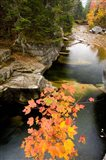 Upper Falls on the Ammonoosuc River, White Mountains, New Hampshire