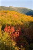 Mount Lafayette in fall, White Mountain National Forest, New Hampshire