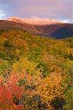 Mt Lafayette in Autumn, New Hampshire