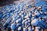 Winter cobblestones, Odiorne, New Hampshire