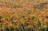 New Hampshire, White Mountains, Autumn
