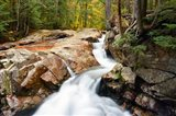 Autumn on Pemigewasset River, Franconia Notch SP, New Hampshire