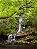 Tom Branch Falls, North Carolina