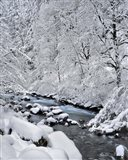 Snow On Boulder Creek, Oregon