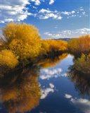 Donner And Blitzen River Landscape, Oregon
