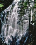 Ramona Falls Landscape, Oregon