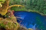 Oregon Blue Or Tamolitch Pool On Mckenzie River