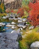 Fall Colors Along The John Day River