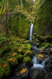 Mossy Grotto Falls, Oregon