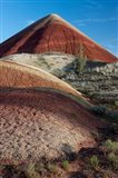 Oregon, John Day Fossil Beds National Monument The Undulating Painted Hills