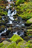 Starvation Creek Falls In Autumn, Columbia Gorge Oregon