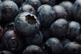 Close-Up Of Dark Blueberries