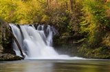 Abrams Falls Landscape, Great Smoky Mountains National Park