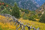 Fence And Meadow Landscape, Utah