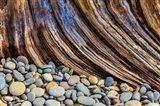 Beach Rocks And Driftwood