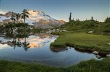 Mt Baker Reflecting In A Tarn On Park Butte