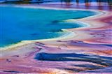Pattern in Bacterial Mat, Midway Geyser Basin, Yellowstone National Park, Wyoming