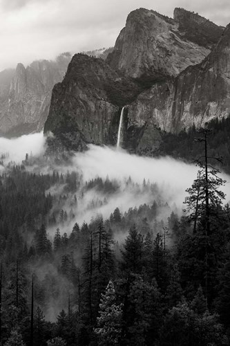 Bridal Veil Falls, Yosemite NP (BW) Poster by Judith Zimmerman / DanitaDelimont for $51.25 CAD
