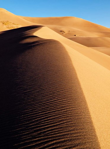 Great Sand Dunes National Park And Preserve Poster by Ann Collins / DanitaDelimont for $40.00 CAD