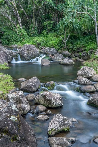 Limahuli Garden And Preserve, Kauai, Hawaii Poster by Rob Tilley / Danita Delimont for $60.00 CAD