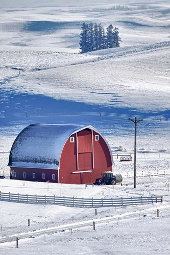 Snow-Covered Barn, Idaho Poster by Terry Eggers / Danita Delimont for $55.00 CAD