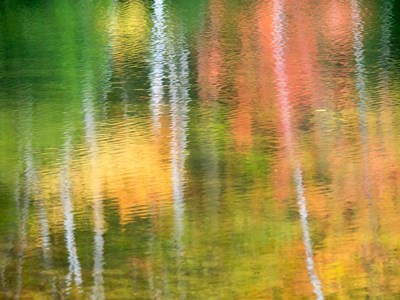 Panned Motion Blur Of An Autumn Woodland Reflection Poster by Julie Eggers / Danita Delimont for $45.00 CAD