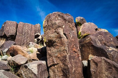 Petroglyphs At Three Rivers Petroglyph Site, Three Rivers, New Mexico Poster by Russ Bishop / DanitaDelimont for $68.75 CAD