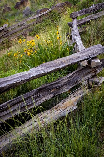 Split Rail Fence In Smith Rock State Park, Oregon Poster by Jaynes Gallery / Danita Delimont for $42.50 CAD