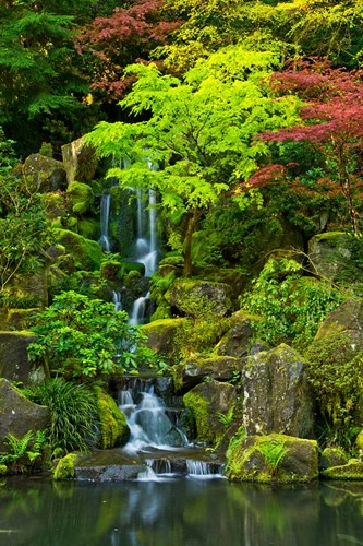 Heavenly Falls, Portland Japanese Garden, Oregon Poster by Michel Hersen / Danita Delimont for $51.25 CAD
