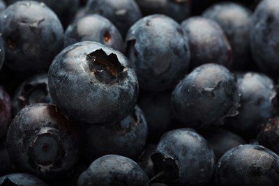 Close-Up Of Dark Blueberries Poster by Rick A Brown / Danita Delimont for $42.50 CAD