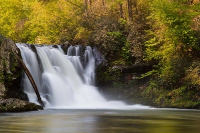 Abrams Falls Landscape, Great Smoky Mountains National Park Poster by Jaynes Gallery / Danita Delimont for $47.50 CAD