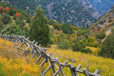 Fence And Meadow Landscape, Utah Poster by Jaynes Gallery / Danita Delimont for $53.75 CAD