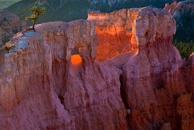 First Light On The Hoodoos At Sunrise Point, Bryce Canyon National Park Poster by Judith Zimmerman / DanitaDelimont for $47.50 CAD
