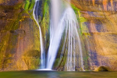 Lower Calf Creek Falls Detail, Utah Poster by Russ Bishop / DanitaDelimont for $68.75 CAD