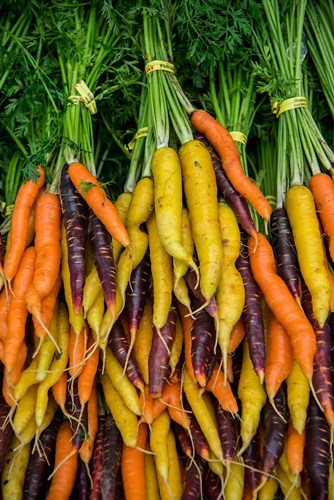 Display Of Carrot Varieties Poster by Jaynes Gallery / Danita Delimont for $42.50 CAD