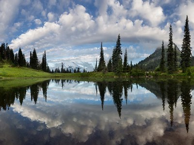 Mt Rainier And Clouds Reflecting In Upper Tipsoo Lake Poster by Gary Luhm / Danita Delimont for $70.00 CAD