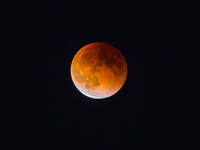 Blood Moon In Seattle Poster by Gary Luhm / Danita Delimont for $45.00 CAD