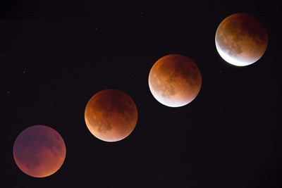 Composite Of The Phases Of A Total Lunar Eclipse Poster by Jamie & Judy Wild / Danita Delimont for $47.50 CAD