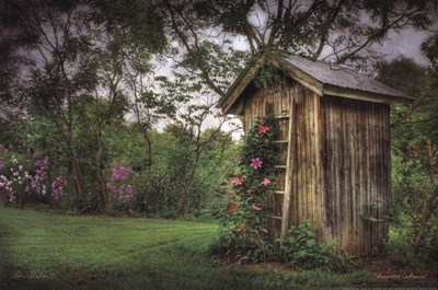 Fragrant Outhouse Poster by Lori Deiter for $21.25 CAD