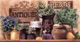 Antiques And Herbs