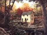 Old Mill Stream V