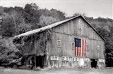 Patriotic Farm II