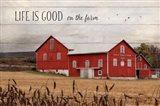 Life is Good on the Farm