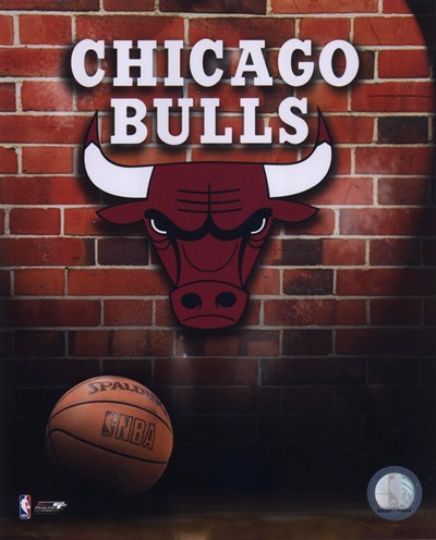 Bulls - 2006 Logo Poster by Unknown for $21.25 CAD