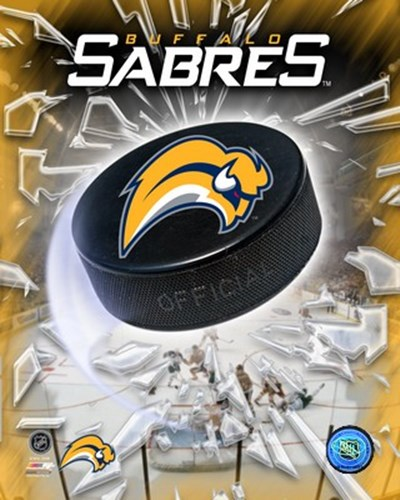 '06 / '07 - Sabres Team Logo Poster by Unknown for $21.25 CAD