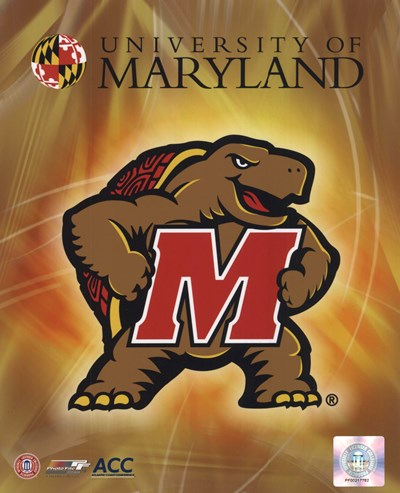 University of Maryland 2008 Logo Poster by Unknown for $21.25 CAD