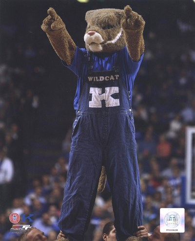 University of Kentucky Wildcats Mascot Poster by Unknown for $21.25 CAD